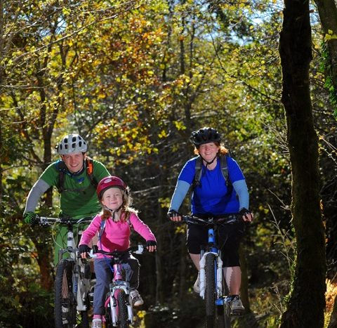 Mountain bike trail south wales
