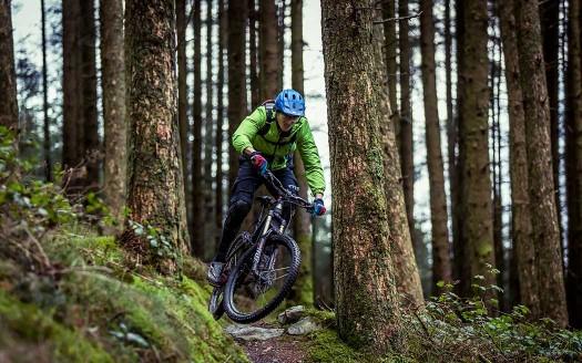 coedtrallwm-trail