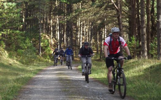 Newborough Cycling Trails